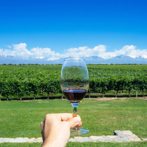Chile - Experience the wines of Casablanca and Colchagua Valleys