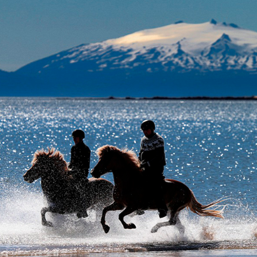 Iceland - Horseback tour: Ride an Iceland pony with the kids!