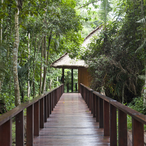 Peru - Inkaterra Reserva Amazonica: The Best Eco-Lodge in the Peruvian Amazon