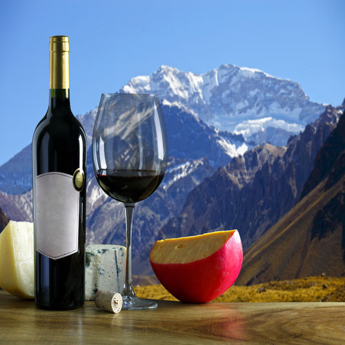 Argentina - The Wine Valleys of Mendoza: Taste Award Winning Wines With Andean Views