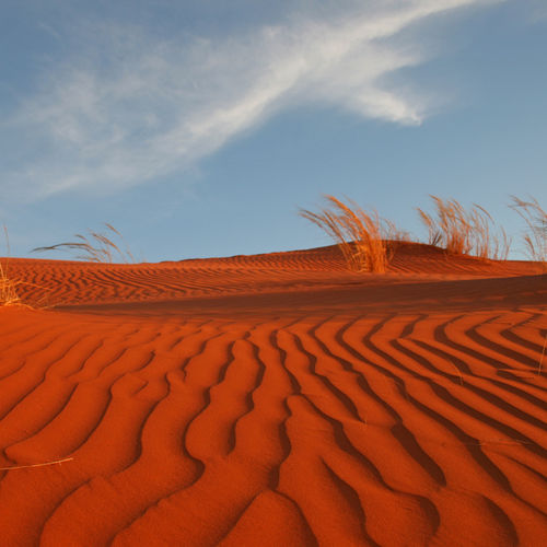Namibia - The Red Dunes Of Sossusvlei
