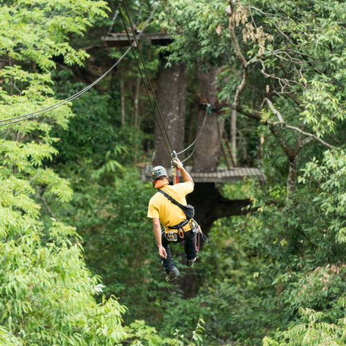 Laos - Huay Xai: Enjoy A Ziplining Experience In Nam Kan National Park