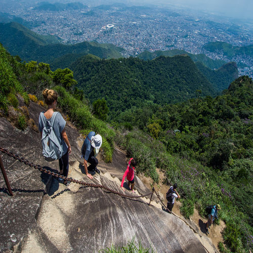 Brazil - Drive or hike through the Tijuca Forest with the family