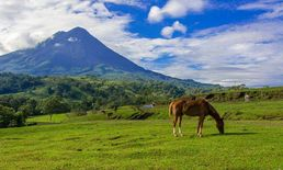 Costa Rica Travel - Best National Parks of...